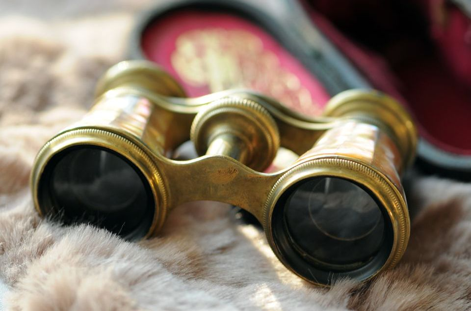 Another Name For Opera Glasses